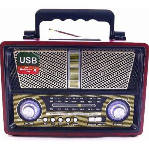 רדיו בסגנון עתיק עם בלוטוס