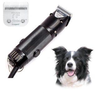 האחרון מכונת תספורת לכלבים מקצועית | מכונות תספורת לכלבים וחתולים פתח תקווה BD-02